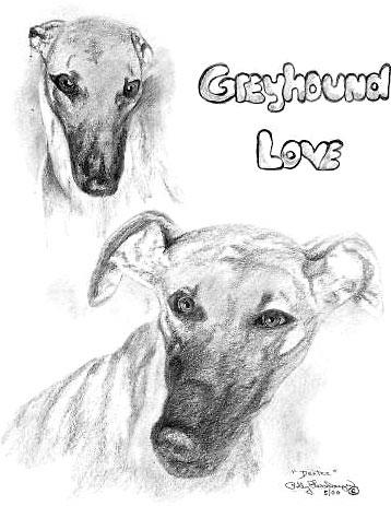 Greyhound Love
